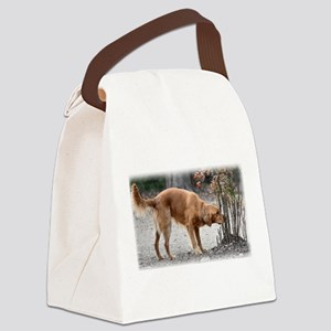 Irish Setter Canvas Lunch Bag