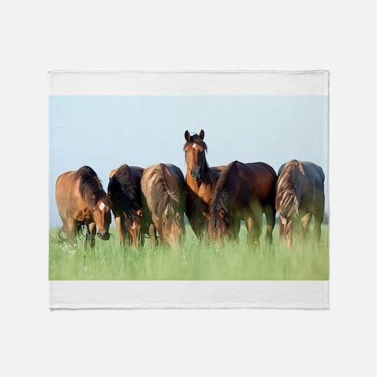 Beautiful horse stallion horses suns Throw Blanket