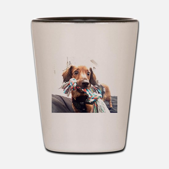 Pet Shot Glass