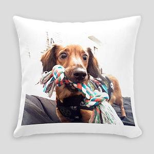 Pet Everyday Pillow