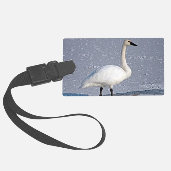 Funny Waterfowl Luggage Tag