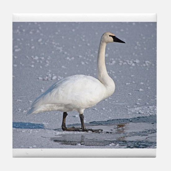 Swan Tile Coaster