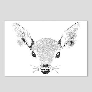 Doe a Deer Postcards (Package of 8)