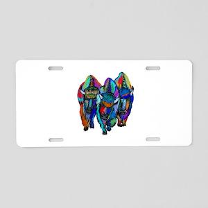 TRIO Aluminum License Plate