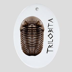 Trilobite Oval Ornament