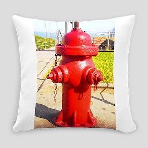Alcatraz Hydrant Everyday Pillow