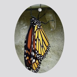 Monarch Butterfly Oval Ornament