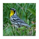 Yellow-throated Warbler Tile Coaster