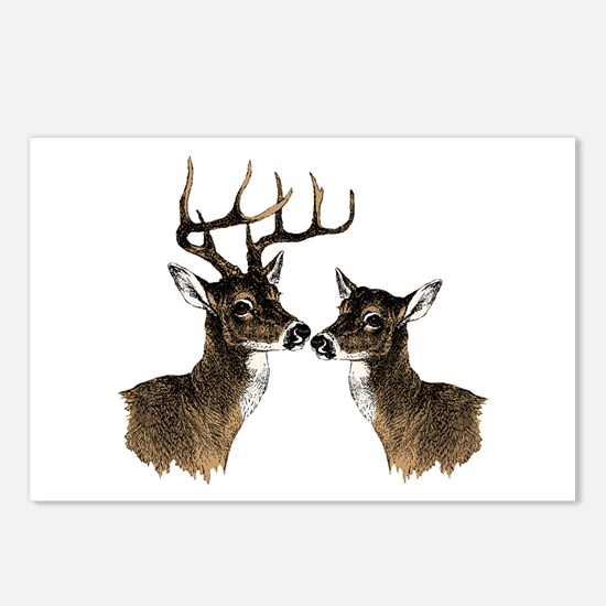 Buck and Doe Postcards (Package of 8)