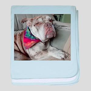 Bulldog Bandana baby blanket