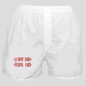 I LOVE YOU / hidden message Boxer Shorts