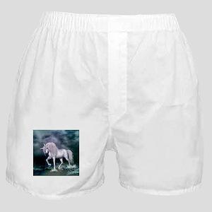Wonderful unicorn on the beach Boxer Shorts