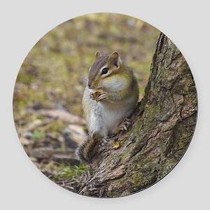 chipmunk eating nut Round Car Magnet
