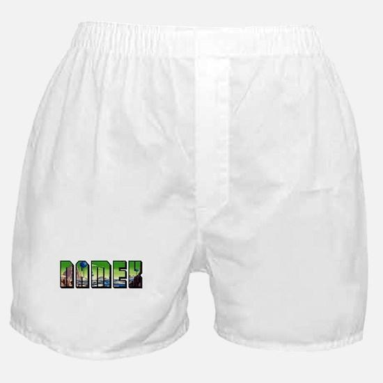 NAMEK Boxer Shorts