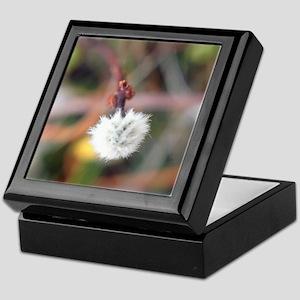 dandelion Macro Keepsake Box