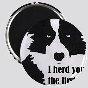 Border Collie Herd You Magnets