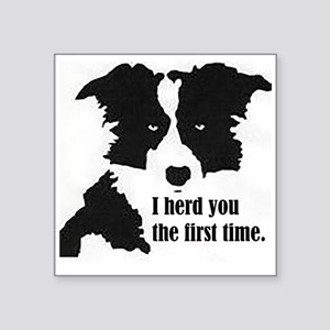 Border Collie Herd You Sticker