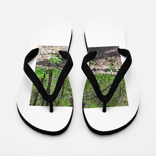 Hide and seeker Flip Flops