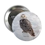 "Snowy Owl 2.25"" Button"