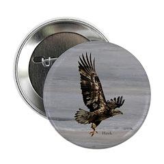 "Hawk 2.25"" Button"