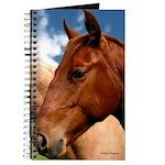 2 Horses Journal