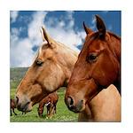 2 Horses Tile Coaster