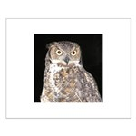 Great Horned Owl Small Poster