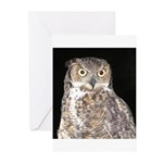 Great Horned Owl Greeting Cards (Pk of 10)