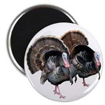 Wild Turkey Pair Magnet