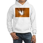 p4042. lite @ the end of the Hooded Sweatshirt