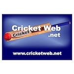 Cricket Web Large Poster