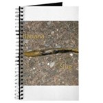 Banana Slug Journal