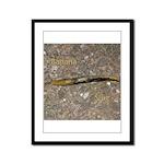 Banana Slug Framed Panel Print