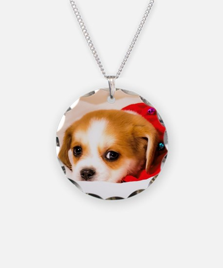 Beaglier Puppy Wearing a Red Necklace