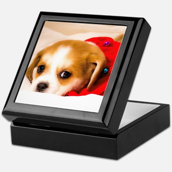 Beaglier Puppy Wearing a Red Collar L Keepsake Box