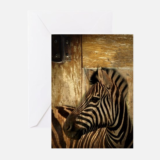 wild zebra safari Greeting Cards