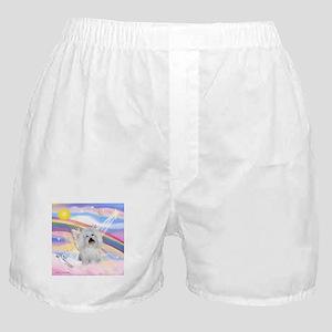 Clouds & Coton De Tulear Boxer Shorts