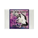 Cat Aquarius Rectangle Magnet