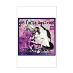 Cat Aquarius Mini Poster Print