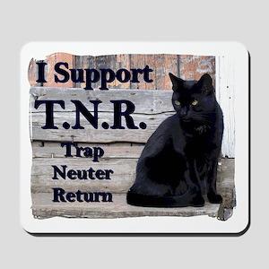 I Support TNR Mousepad