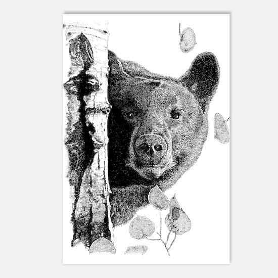 Aspen Bear Postcards (Package of 8)