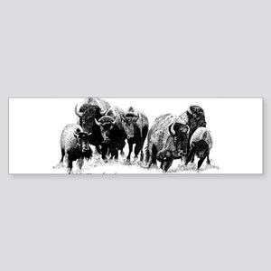 Buffalo Herd Bumper Sticker