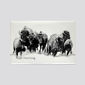 Buffalo Herd Rectangle Magnet