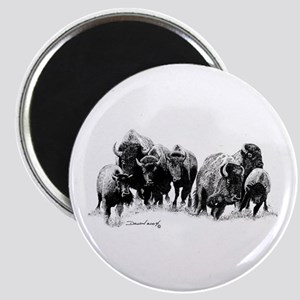 Buffalo Herd Magnet