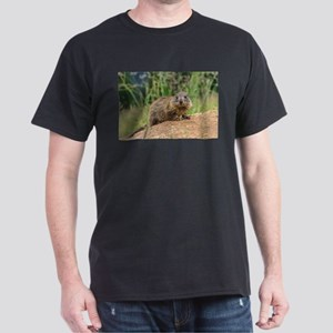 young marmot on alpine meadow T-Shirt