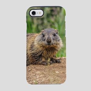 young marmot on alpine meado iPhone 8/7 Tough Case