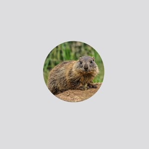 young marmot on alpine meadow Mini Button