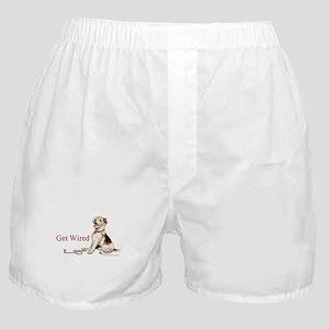 Wire Fox Terrier Dog Walk Boxer Shorts