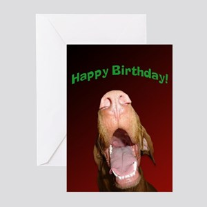 Apache Happy Birthday Greeting Cards