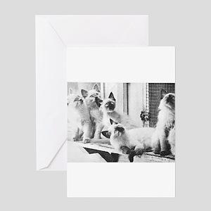 balinese kittens Greeting Cards